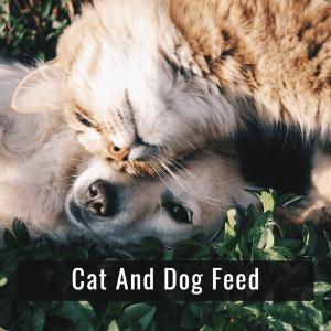 Cat Dog Food